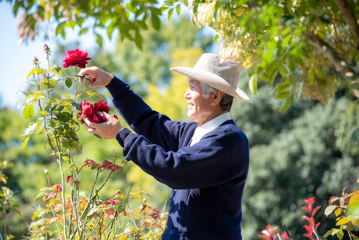バラを愛し、バラに愛された社長が開発するローズ商品が魅力的な『福山バラード(薔薇人)』(広島県)