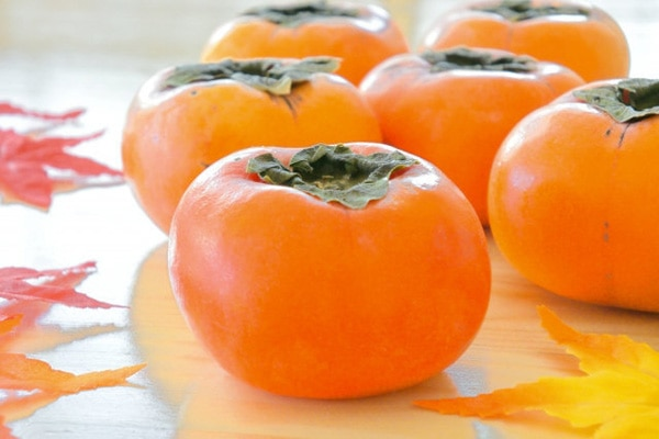 来年以降も干し柿を作りたい!今年大きな魅力を感じた【柿】の栄養と効能について