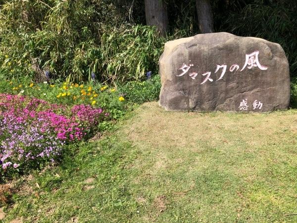 ダマスクローズ栽培で日本初のオーガニックJAS認定を受けた「ダマスクの風」