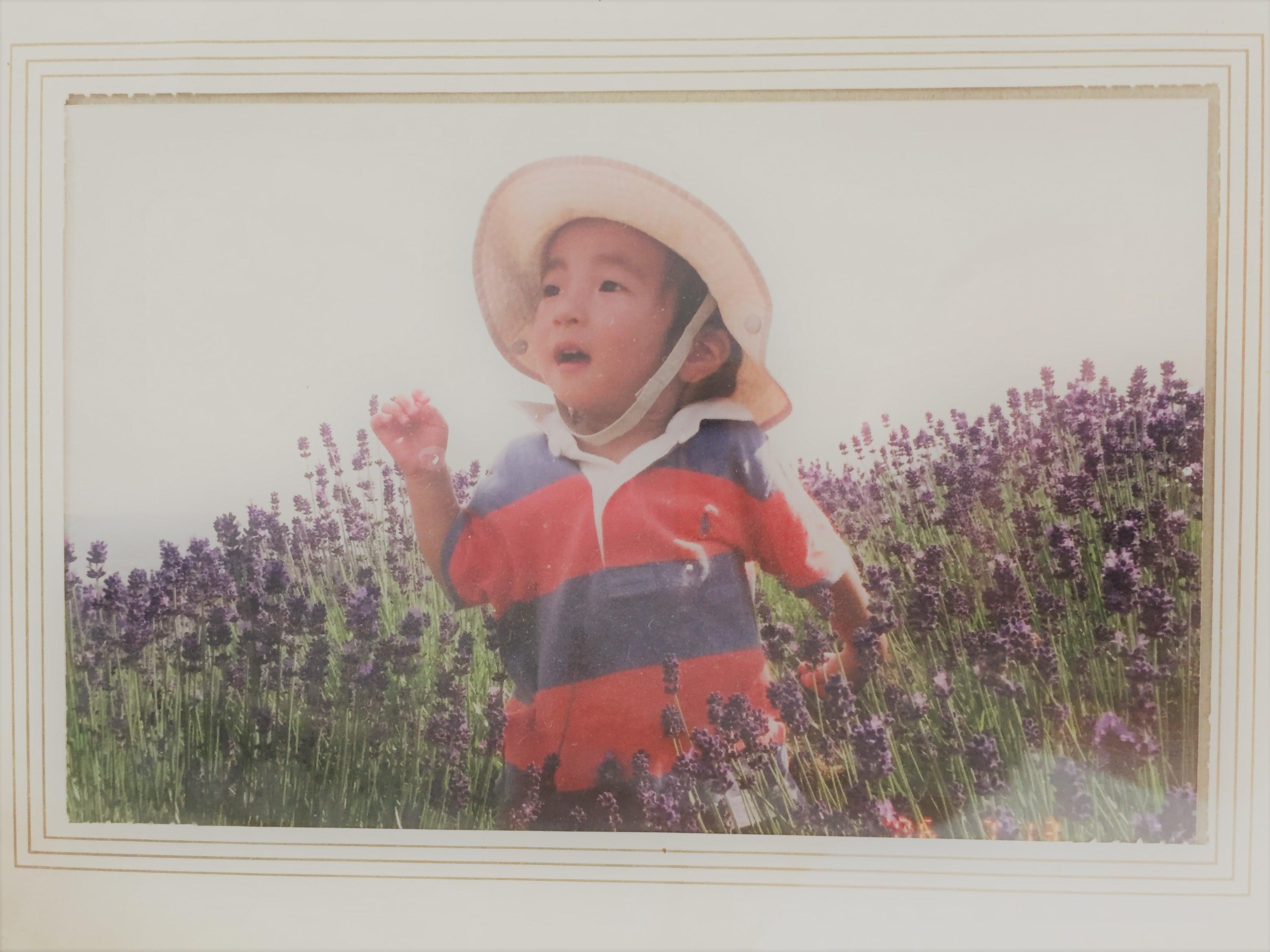 『白いラベンダー』の存在を初めて知りました。秋田県美郷町だけではなく富良野でも見られるようです。