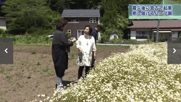 東日本大震災後に、癒しの場を提供したいという想いから生まれた「潮風のハーブ園」
