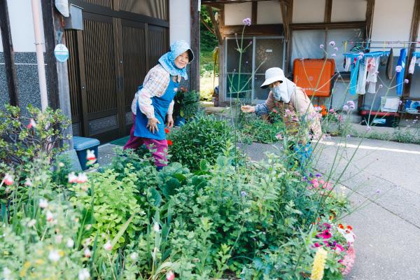 石川県能登半島の志賀町熊野地区が取り組む「薬草とハーブ くまのプロジェクト」とは