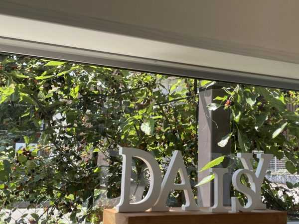 無農薬自家栽培ハーブティーカフェ「herb & garden DAISY」が魅力的