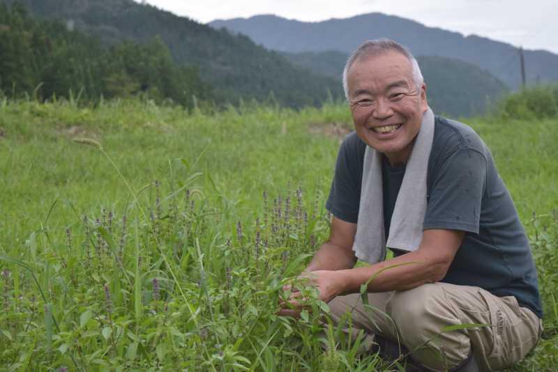 ハーブが繋ぐ縁。福井県池田町のホーリーバジル生産者のストーリー